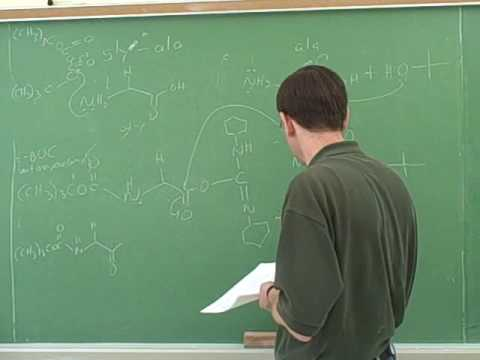 Amino acid and polypeptide synthesis (12)