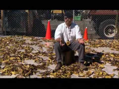 MythBusters - Banana Peel Slip