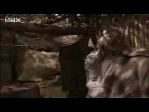 Sheriff Tricks & Traps Little John - Robin Hood