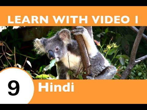 Learn Hindi with Video - You Don't Have to Go 'Down Under' to See the Outback with HindiPod101.com