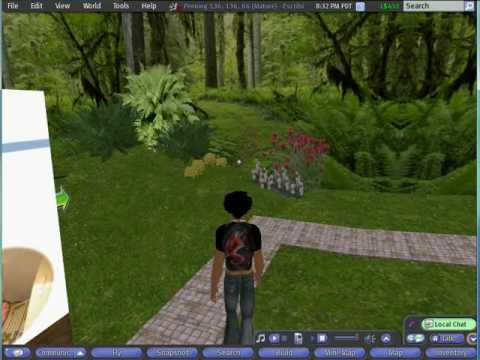 Second Life: Should It Be Your First Choice? Part 8