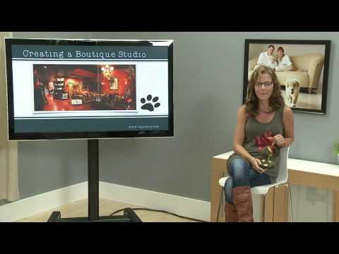 The V Gallery Evolution - Pets and People Photography with Vicki Taufer