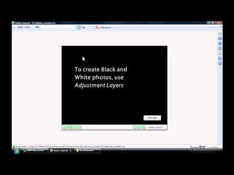 Captivate: Introducing simulating software | lynda.com
