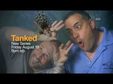 Tanked: A New Animal Planet Series