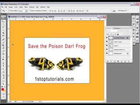 Photoshop Tutorial On How Too Use The Layers Part1