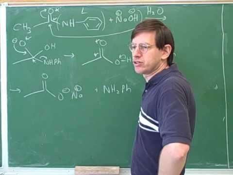 Hydrolysis of carboxylic acid derivatives (8)