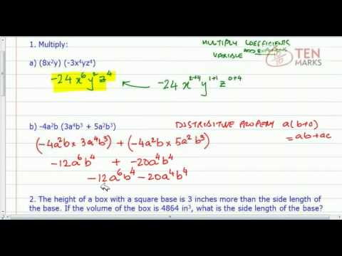 Multiply Polynomials with Monomials