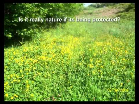 Cultures of Nature (2)