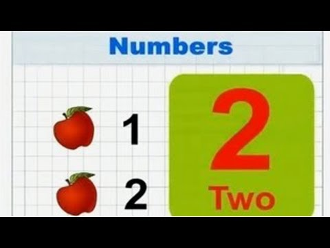 Kindergarten - Numbers - English - Learn Series For Kids