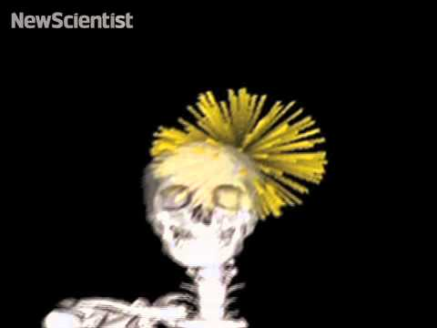 Punk rock skeleton demos mind control system