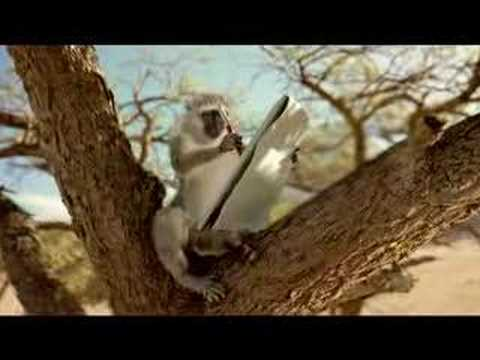 San Diego Zoo TV Spot: Monkey Trails - Letter