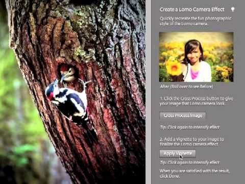 Adobe Photoshop Elements 9 - Making a Guided Edit