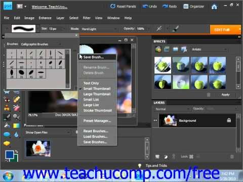 Photoshop Elements 9.0 Tutorial Loading New Brushsets Adobe Training Lesson 7.2