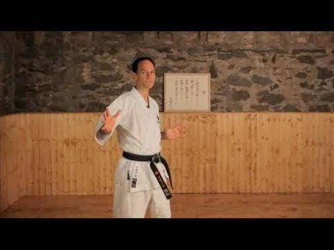 What Are the Major Styles of Karate?