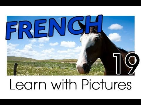 Learn French - French Farm Animals Vocabulary