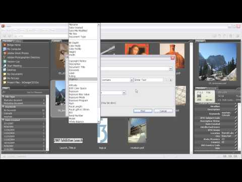 Adobe® InDesign® CS3  NAVIGATING INDESIGN DOCUMENTS Exploring Adobe Bridge