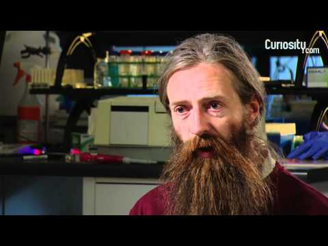 Aubrey de Grey: On Living Longer