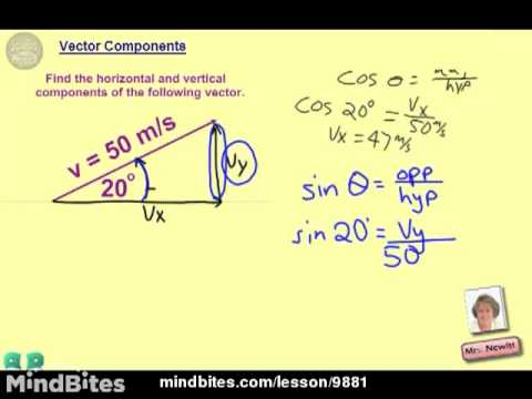 AP Physics Topic 3-A Examples