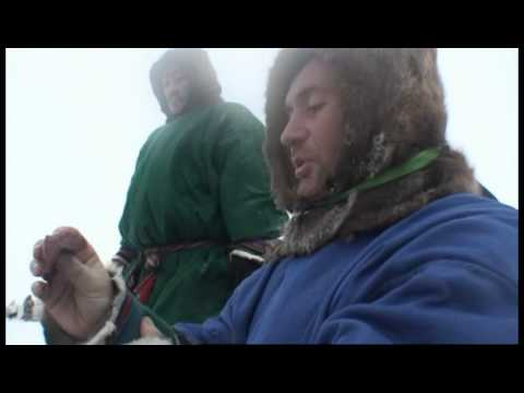 Bruce Parry eats raw reindeer - Tribe - BBC