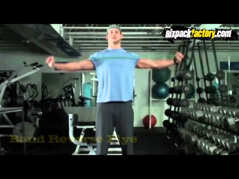 Rear Deltoid Blast Workout - Weak Point Training - Rear Deltoids