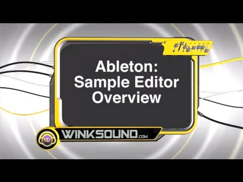 Ableton Live: Sample Editor Overview | WinkSound