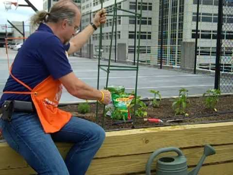 How To Plant Tomatoes - The Home Depot