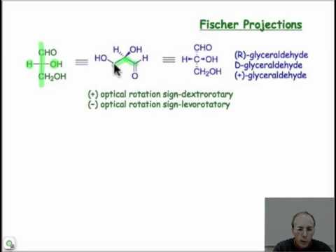 Monosaccharides and Fischer Projections