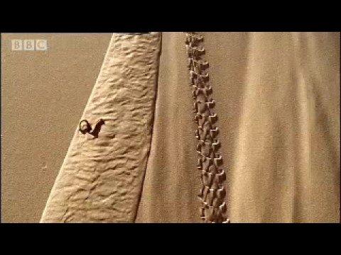 How to make a sand dune - Dune - BBC wildlife