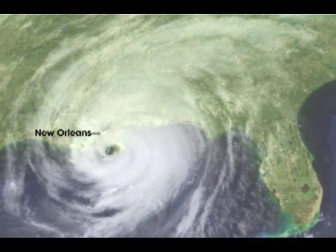 Hurricane Katrina Day by Day