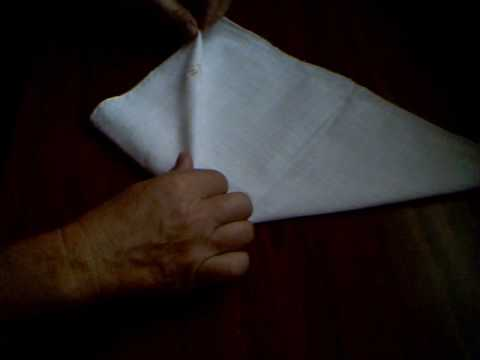 Fancy Napkin Fold