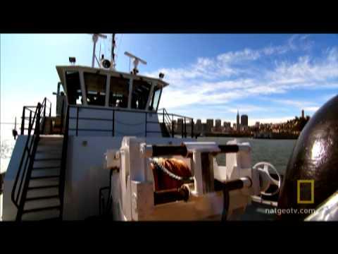 Dry-docking a Cruise Ship