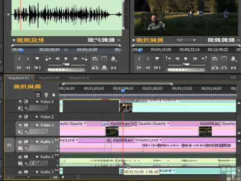 Adobe Premiere CS5 Mixing Music And Voice in Video Tracks