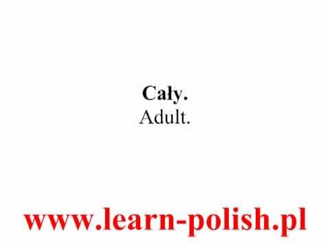 2 Buying a train ticket in Poland.  Fahrkarten kaufen in Polen