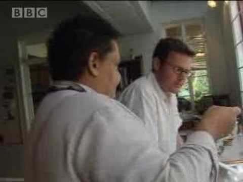 Fish in Fiji - world food and cooking - BBC
