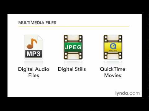 Importing media into Final Cut and Media Composer | lynda.com