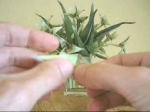 Folding an Origami Flower with Stem and Leaves