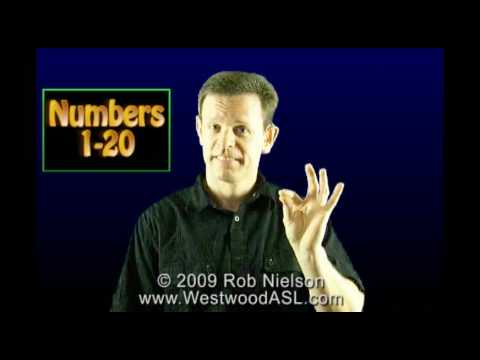 Review of American Sign Language Numbers 1 - 20 (ASL, counting)