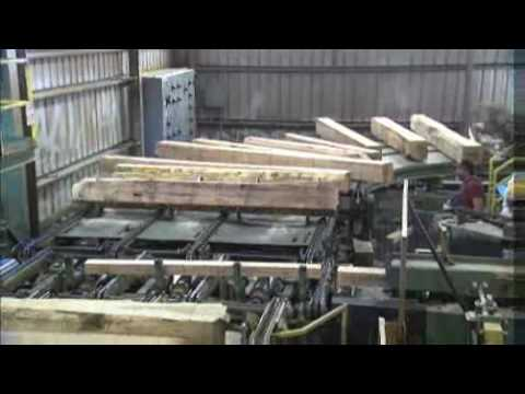 HowStuffWorks Show: Episode 3: Log Cutting