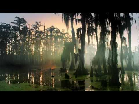 Swamp People - Swamp People Super Bowl Ad