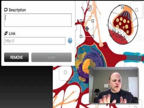 How to Create An Interactive Neuron