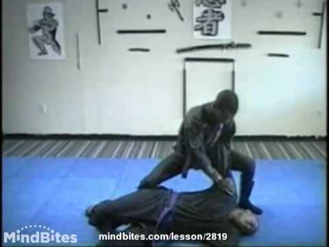 Ninjutsu:Taijutsu (Unarmed Combat of the Ninja)