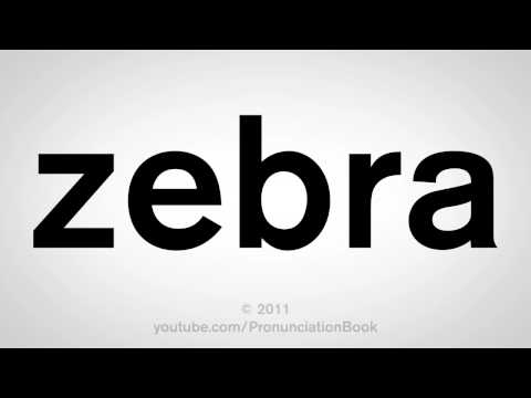 How To Say Zebra