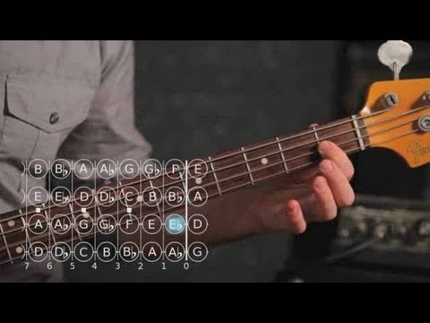 Bass Chords: How to Play a D Sharp/E Flat Minor Triad