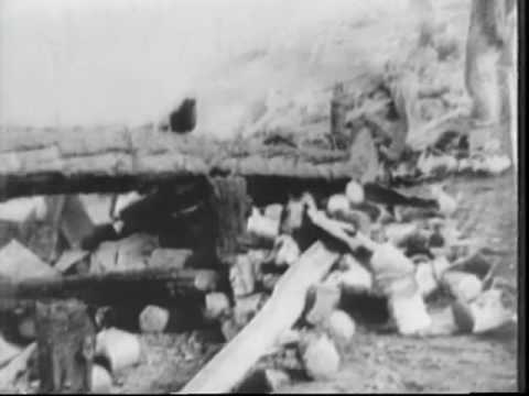 Cruiser Bow Ripped Off By Typhoon 1945 Newsreel