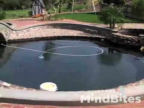 Swimming Pools Inspection - Home Inspection