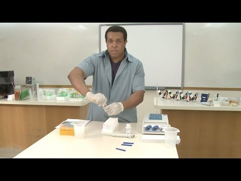DNA Isolation Step 2: Extracting the DNA