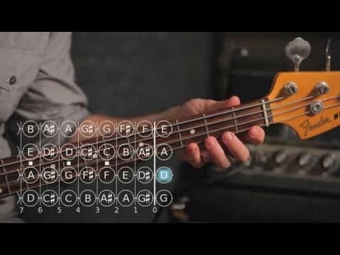 Bass Chords: How to Play a D Minor Triad