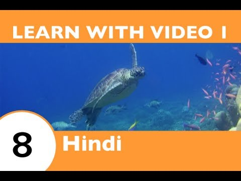 Learn Hindi with Video - If This Hindi Video Lesson Makes You Feel Froggy, Then JUMP!