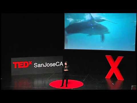 TEDxSanJoseCA 2012 - Diana Reiss - Thinking Dolphin