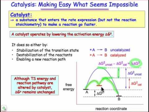 Catalysis Concepts